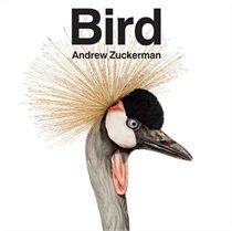 Bird coffee table book #FindWhatYouLove