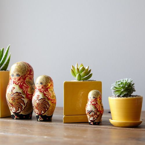 533 best |living room plants| images on pinterest