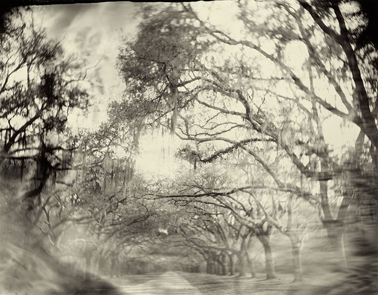 Sally Mann -- Georgia