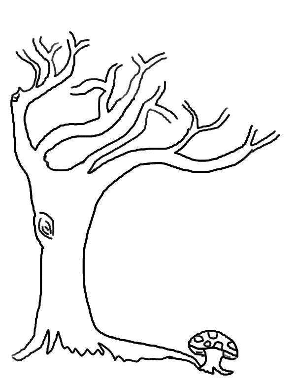 tree without leaves coloring page - 104 best l images on pinterest leaves silhouette