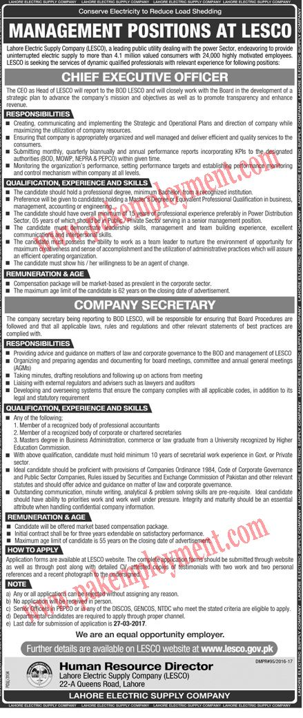 249 best Pakistan Jobs images on Pinterest Html, Dates and Finals - chief executive officer job description