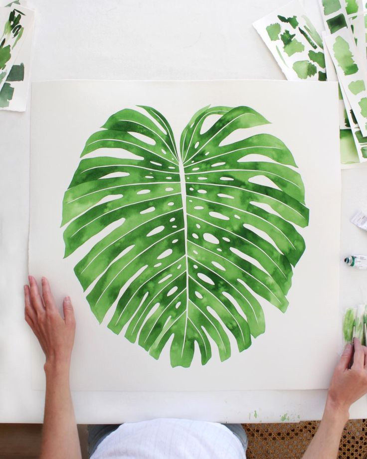 happy friday 24x24 monstera deliciosa i just finished watercolor on thick arches