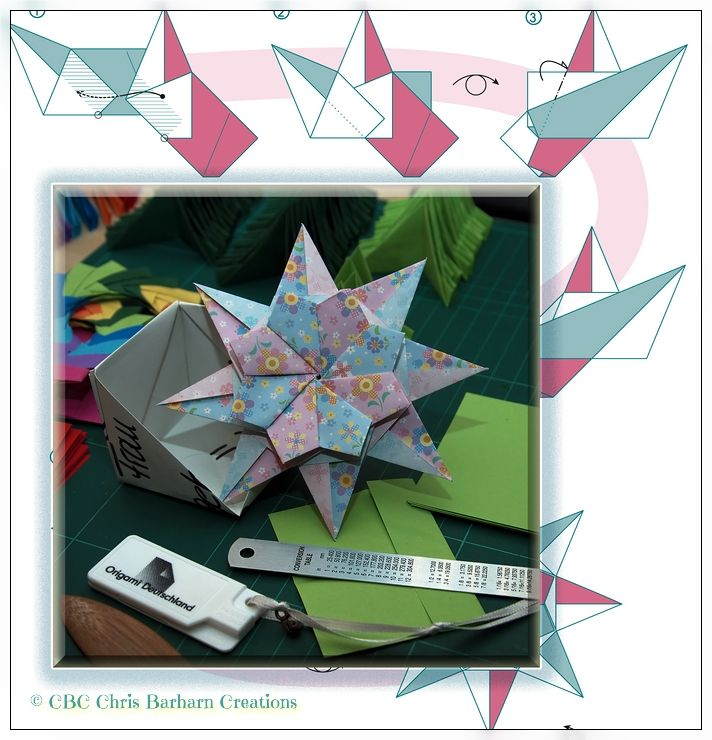 'Brina Star' Designer: Maria Sinayskaya I love it Maria! Folder and Photograph Chris Barharn Creations