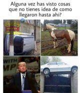 Memes en español nuevos: Cosas que no tienes idea de cómo llegaron ahí