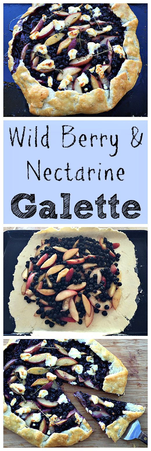 207 best wild food foraging recipes images on pinterest wild wild berry and nectarine galette fresh thymecomic bookrestaurant foodreal food recipesgoat forumfinder Gallery
