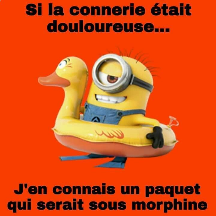 Les minions … ➫➫➫ http://www.diverint.com/imagenes-memes-chistosos-facebook-video-youtube-duermo