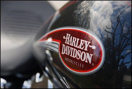 Home - Harley davidson Dyna #HarleydavidsonDyna #harleydavidsondynastreetbob #harleydavidsondynalowrider #harleydavidsondynasuperglide #harleydavidsondynaswitchback