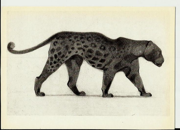 Black Panther, Drawing, Illustrations of Animals by Vatagin, Vintage Russian Postcard  unused 1978 by LucyMarket on Etsy