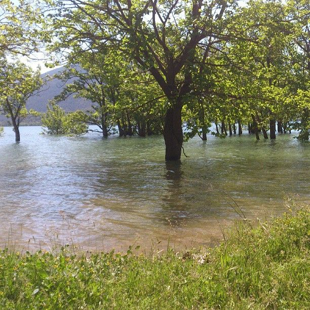 Panta Sant Antoni - Sant Antoni Dam #lolago #lago #salasdepallars #pallarsjussa #pallars #lleida
