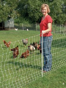 Temporary Chicken Netting. I want to use something like this to allow the girls to eat grass but stay away from our deck and the playscape. Trying to find it cheaper, though.