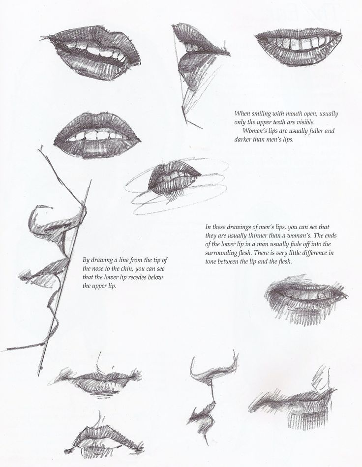 29 best Anatomi Ağız/Anatomy Mouth images on Pinterest | Mouths ...