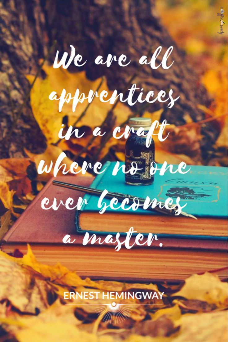 We are all apprentices in a craft where no one ever becomes a master. -Ernest Hemingway