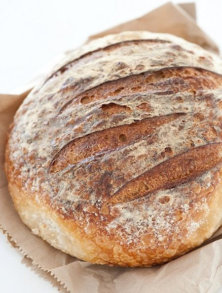 """""""5 Reasons To Make Sourdough Your Only Bread"""" Plus: Article's mentioned future post from a guest baker/blogger: http://realfoodforager.com/guest-post-gluten-free-sourdough-baking/"""