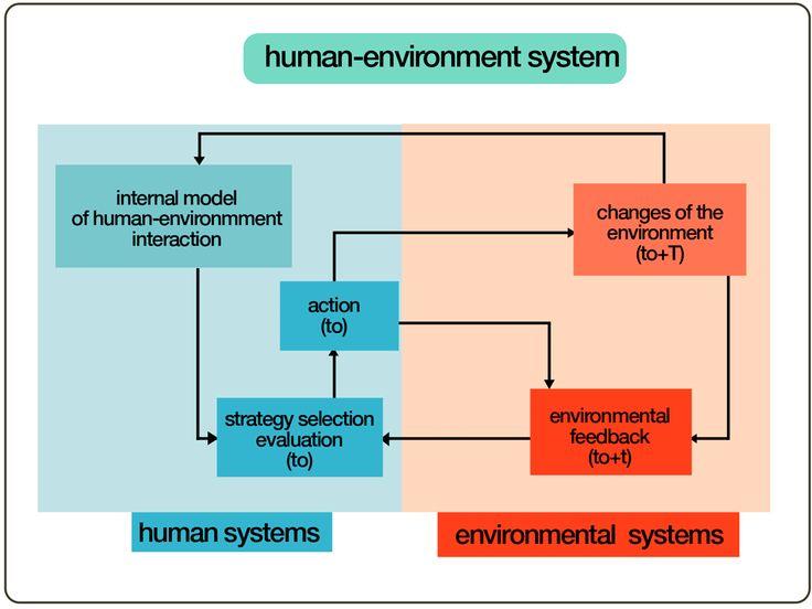 Graphics Kenneth Buddha Jeans Human–environment framework (HES)