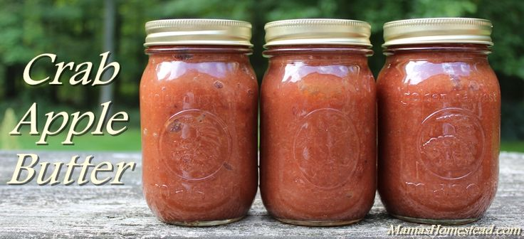Crab Apple Butter - Mama's Homestead http://www.mamashomestead.com/crab-apple-butter/