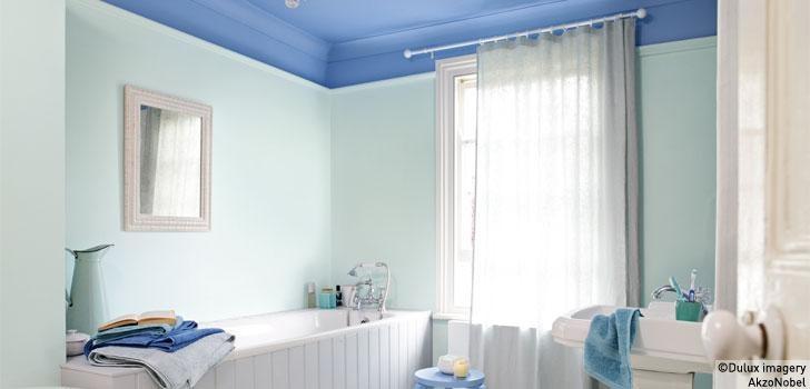 Soft blue bathroom design dulux paint blue bathroom for Dulux bathroom ideas