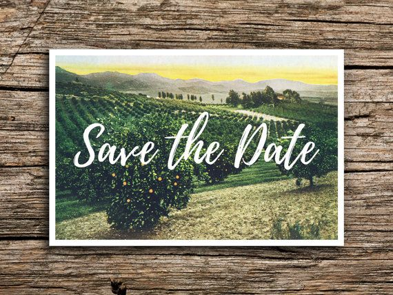 Wine Country Postcard Save the Date // Napa Sonoma Save the Dates Vineyard Grapes Hills California Wedding Winery Wedding Postcards Green