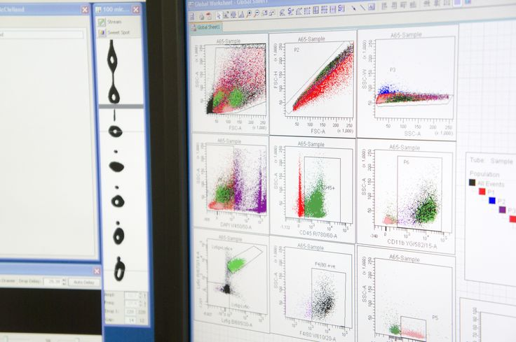 Flow cytometry data can be visualized in a dot plot, where each dot represents a cell and the fluorescent signal tells us if the cell has that particular marker or not.