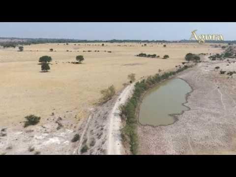 Productores Alteños Fijan su Postura Contra el Trasvase del Río Verde a ...
