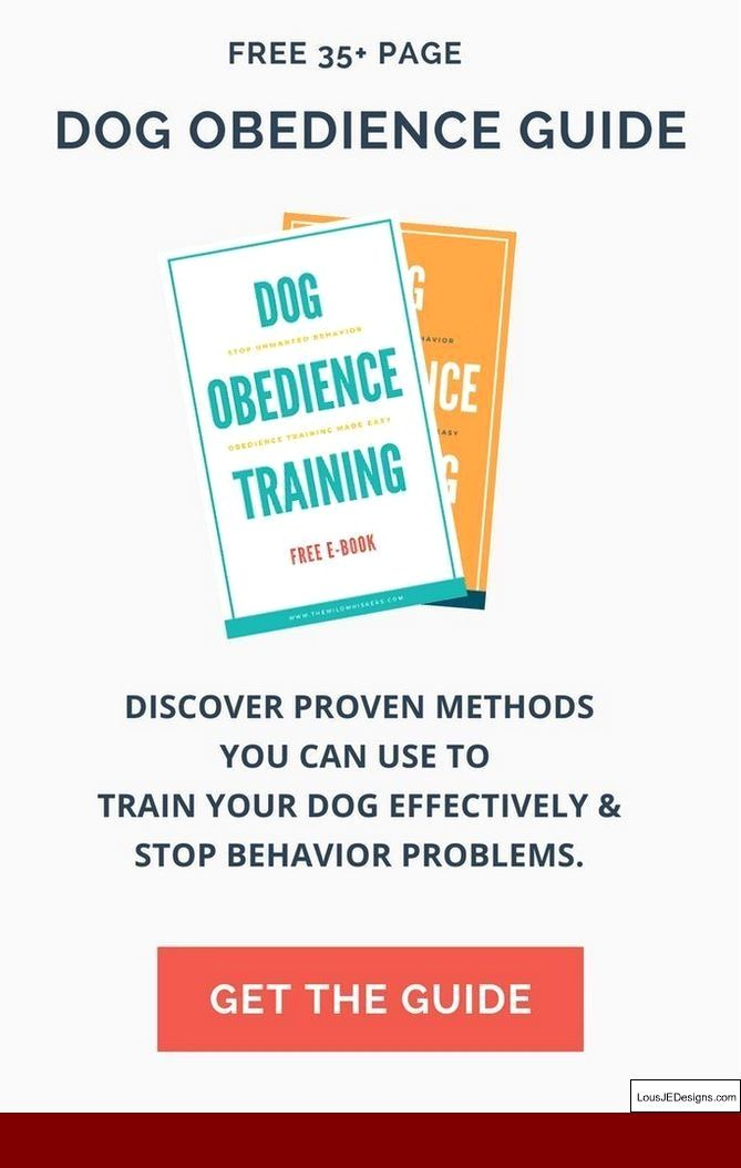Quick Tips To Train Your Dog And Pics Of Train Your Own Service