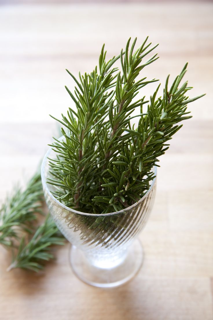 DIY rosemary oil.