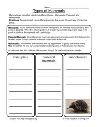 Classification of Animals, Class 9 Science Sample Papers