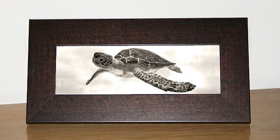 37 Best Images About Ideas For Sea Turtle Bedroom On Pinterest
