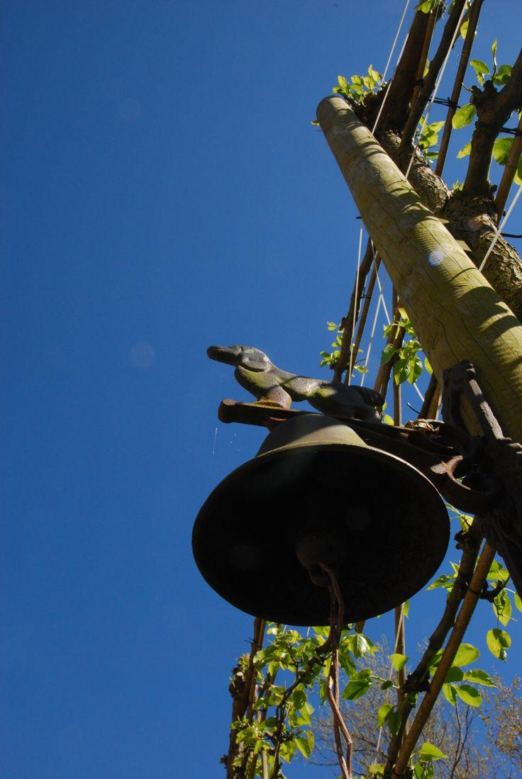 Heldere blauwe luchten - heerlijk weer in Zeeland #vakantie #camping #Zeeland #wwalcheren #F7w #geluid