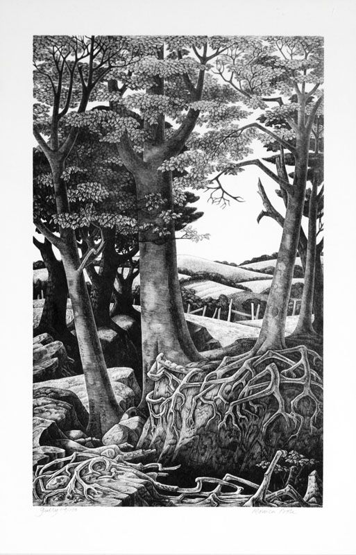 edge of a wood - Google Search