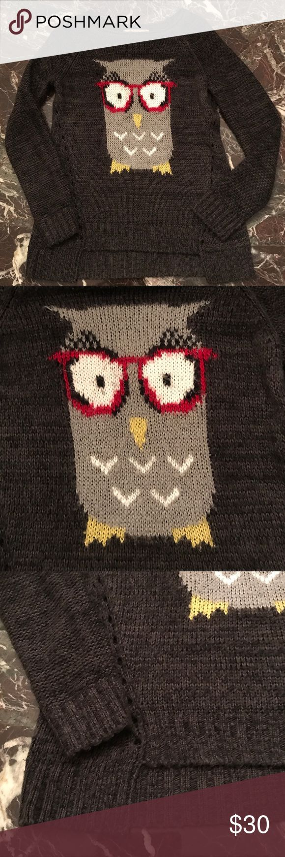 Owl sweater 🦉🦉🦉One Hour Sale Super cute owl sweater!  Looks great with jeans or leggings, excellent and well-loved condition. 🦉💞🦉🎉 Democracy Sweaters Crew & Scoop Necks