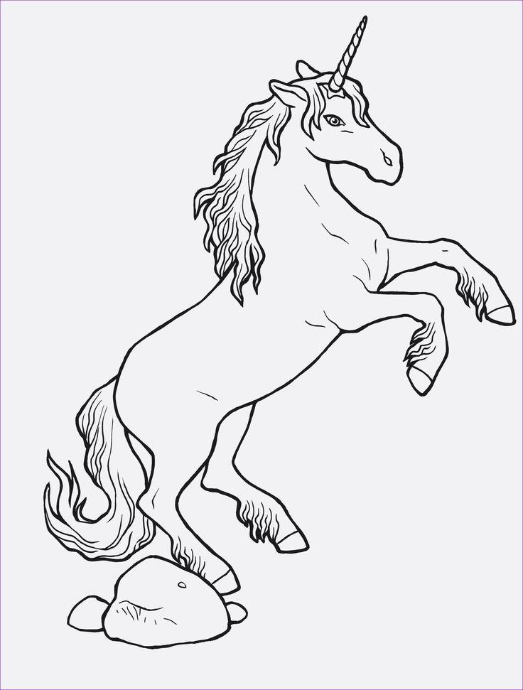 pinsuper malvorlagen on einhörn malvorlagen  horse
