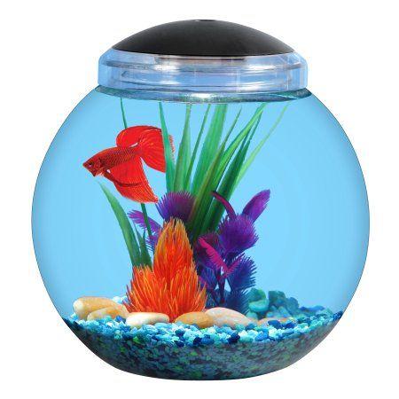 Aqua Culture 1 Gallon Betta Aquarium, Clear