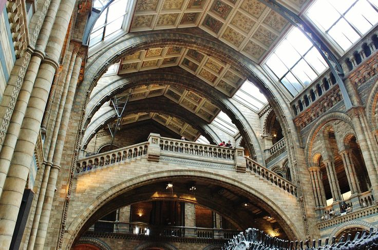 The Grand Entrance - Natural History Museum, London. Soaring Romanesque arches. Gilt and terracotta ceiling panels. A magnificent stone staircase… and a giant Diplodocus skeleton cast centrepiece.