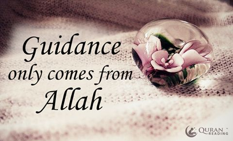 Guidance only comes from Allah #Allah
