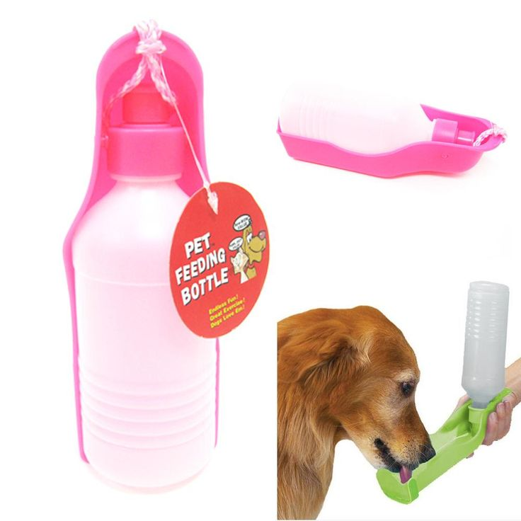 Portable Pet Dog Cat Travel Drinking Water Bowl Bottle: Best 25+ Dog Water Bowls Ideas On Pinterest