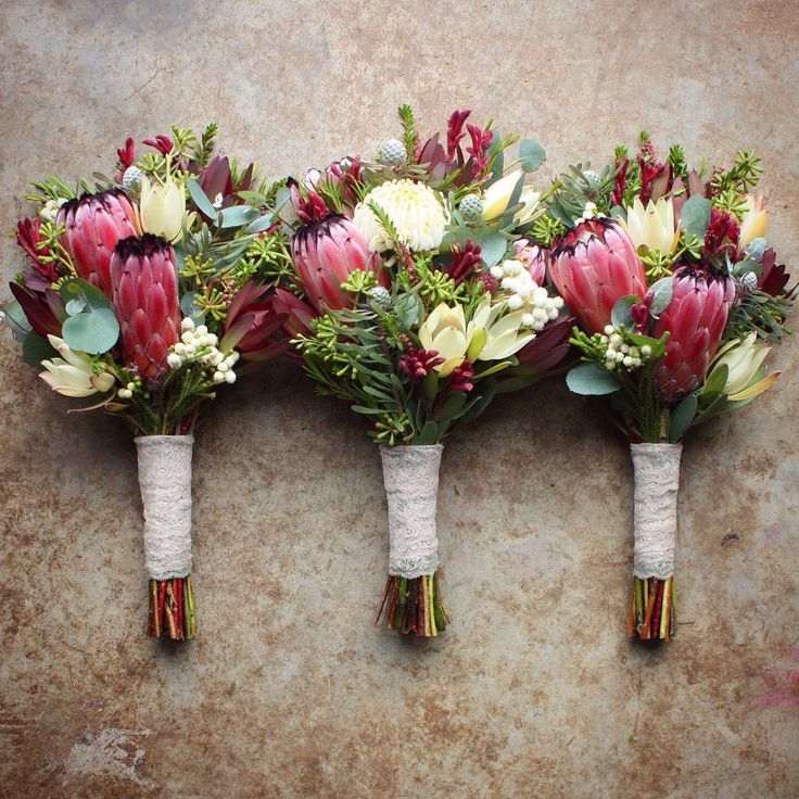 Protea, White Waratah, Kangaroo Paw, Leucadendron bound with vintage lace. Early summer, native bouquet by Swallows Nest Farm