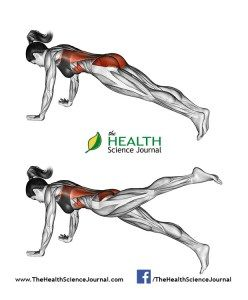 © Sasham   Dreamstime.com - Fitness exercising. Hip extension in position Strap. Female