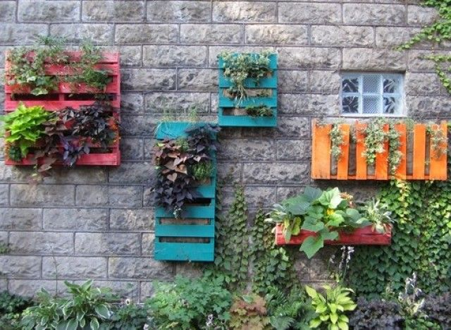 Wooden pallet wall gardens. Love the bright colors!