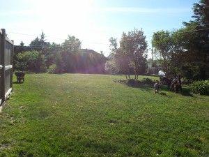 Pension et garderie pour chiens à Gatineau - Extérieure