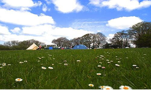 Hidden Spring | Sussex based family run smallholding and campsite