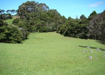 Karamatura valley. Huia