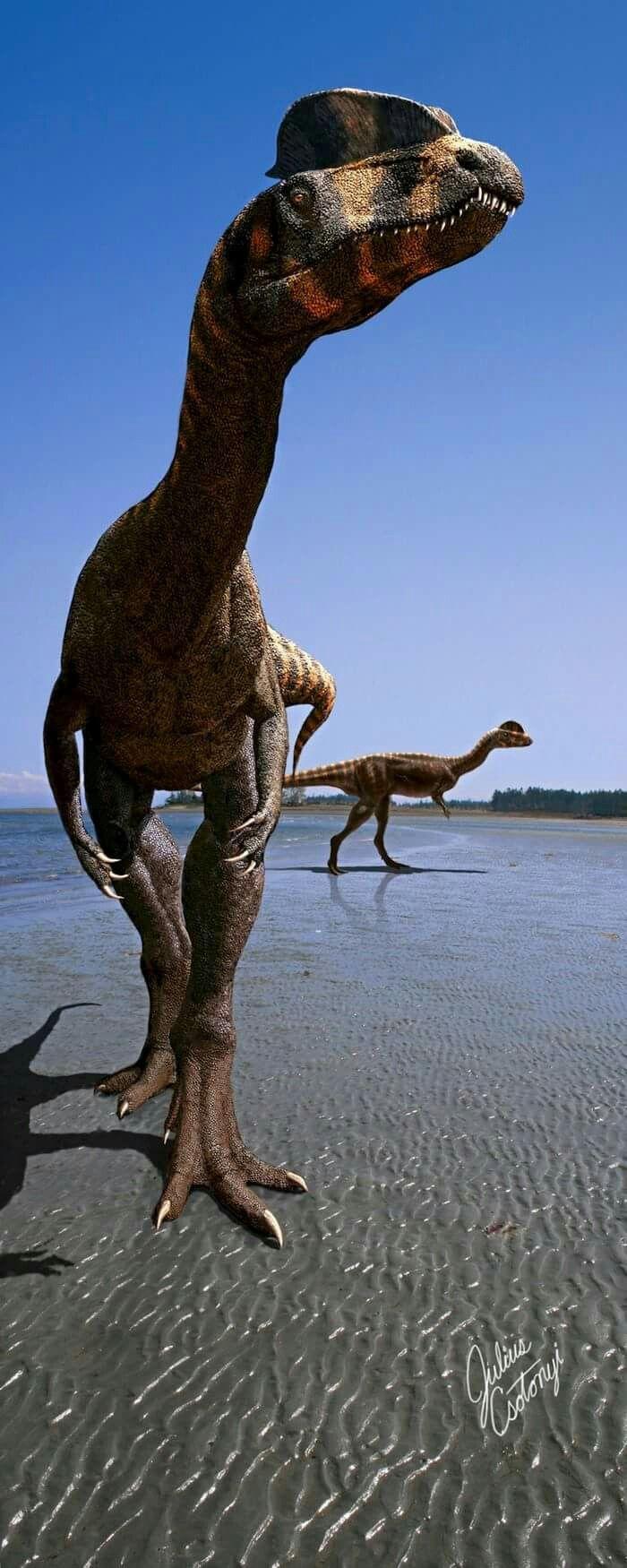 Green tea and velociraptors it s just a flesh wound - Dilophosaurus