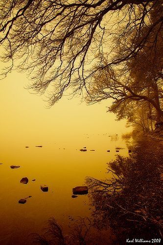Alexander Fog - Emotion