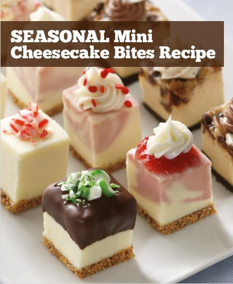 SEASONAL Mini Cheesecake Bites Recipe.