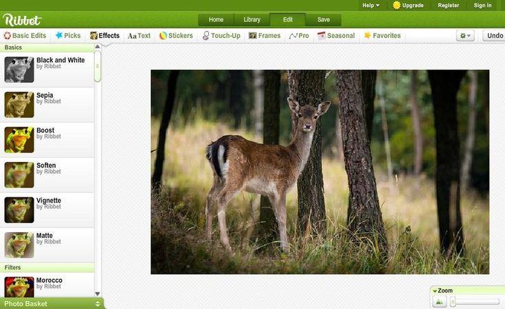 Ribbet es un extraordinario editor de imágenes gratuito, con todas las herramientas que necesitas para mejorar, retocar y editar tus fotografías.