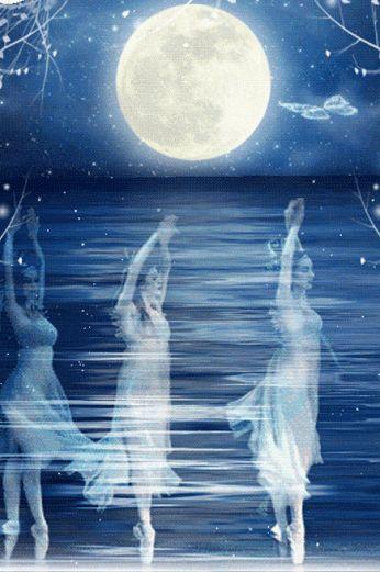 Animazione ballo ballerini e volo di farfalle sullo sfondo dell'acqua e la luna…