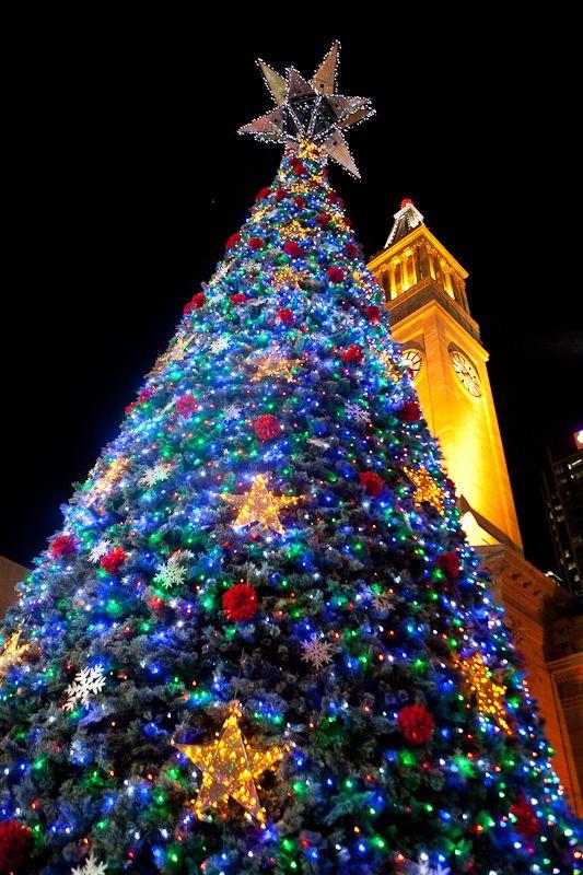 Lighting of the Brisbane City Christmas Tree #brisbane #brisbanecity #christmas #family