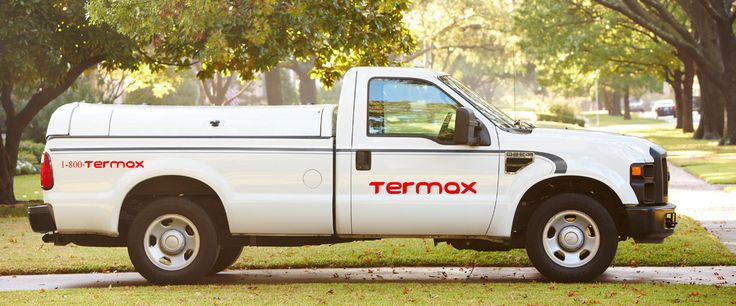 Termax - Have 25 Years Exp. in Wildlife Animal Control & Pest Management for Raccoon, Bird, Insects, Cockroach and Squirrel Removal Services in Toronto, Brampton GTA.