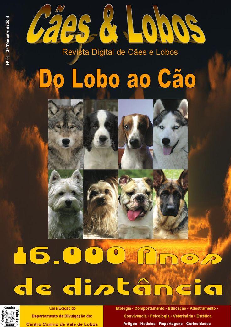 Nº 11 - 3º trimestre 2014  Revista sobre cães e Lobos propriedade do Centro Canino de Vale de Lobos