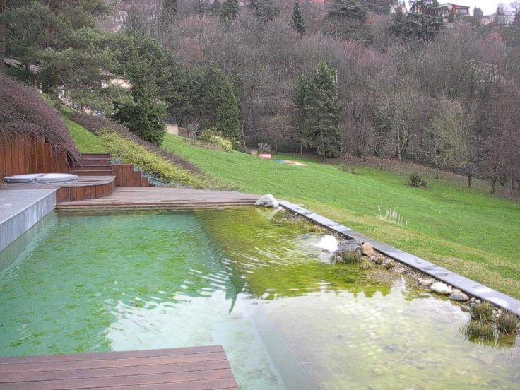 Hybride zwemvijver hombeek aangelegde tuinen door tuinonderneming